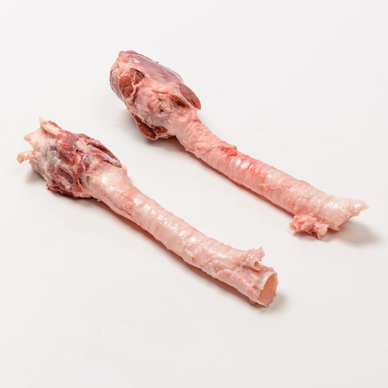 Schweinetracheen mit Stimmritze - Labunat - Quistello Mantua